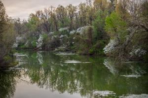 Lake Fayetteville Image