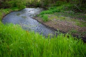 Brush Creek Image